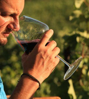 Großartige Weine