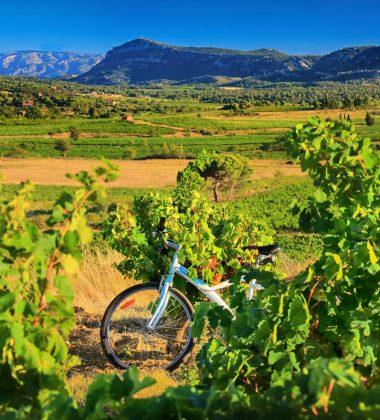 Alle Routen zu Fuß, mit dem Mountainbike, mit dem Fahrrad