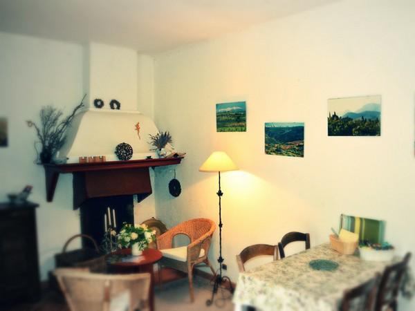 GITE L'EMBRESIENNE – L'OLIVEILLE